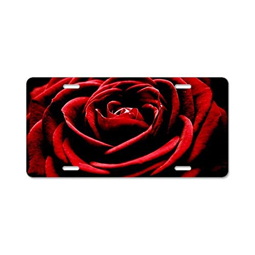 Single Vanity (BNHF CafePress - Single Red Rose - Aluminum License Plate, Front License Plate, Vanity Tag)
