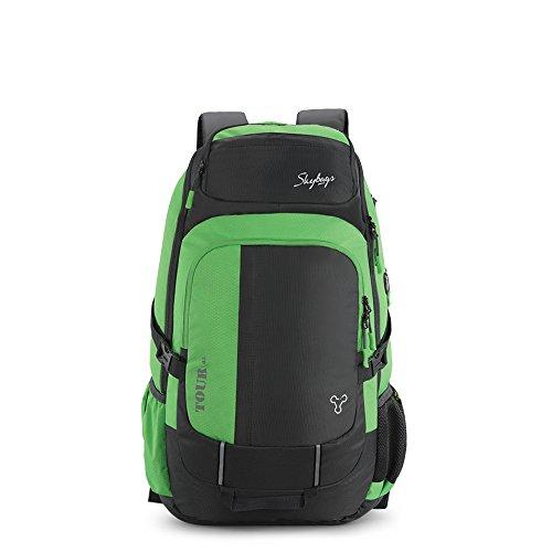 40da96c91 Skybags Weekender 51.2487 Ltrs Steel Grey Hiking Backpack (WKRTOU45SGY)