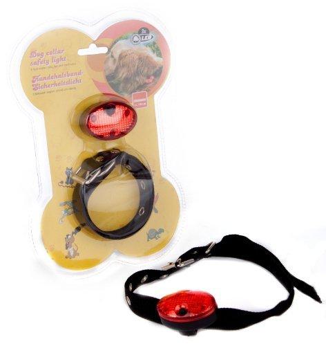 Glühbirne Amps (Hundehalsband & Safety Light)