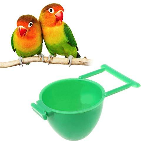 Zonster 1PC Vogel Parrot Feeder Obst Ei Container-Halter-Rahmen HäNgend Haustier-Vogel Supplies