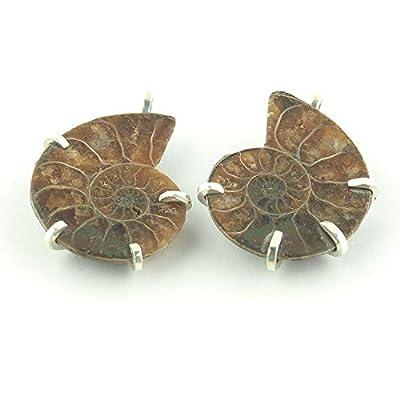 Deux pendentifs fossiles Ammonite de Madagascar fabriqués à partir de la même pièce pour les couples serti d'argent 30x24x5 mm cca.