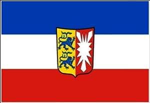 Flagge (90 x 150 cm) Schleswig Holstein