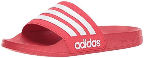 super popular 9f14d 5b2f4 Adidas Mens Adilette Shower Slide Sandal WhiteScarlet, 4 M US