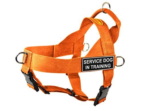 Dean & Tyler DT Universal keine Pull Hundegeschirr mit SERVICE DOG in Training Patches (Orange Hund Patch)
