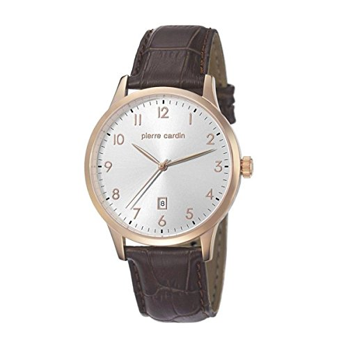 Pierre Cardin pc106671 °F05 - Watch for Men Brown