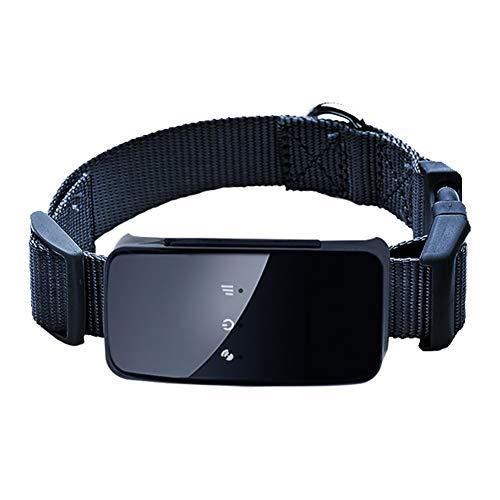 CWZJ Pet GPS Tracker Lead, Mini-Wasserdichter GPS-Tracker Für Hundewelpen-Katze, Wifi-GPS-Hund/Cat-Training Echt Zeit-App,Black