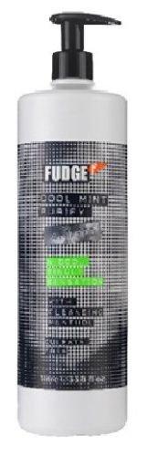 Trockenes Haar Mint Shampoo (Fudge reinigen Cool Mint Shampoo 1000ml + Pumpe 1Liter Salon Size-Sulfat frei)