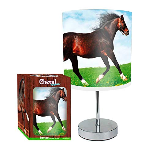 Lampe Pied Metal Chrome Cheval