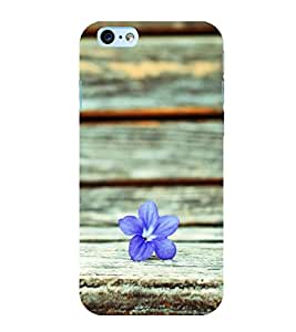 A flower 3D Hard Polycarbonate Designer Back Case Cover for Apple iPhone 6 Plus :: Apple iPhone 6+
