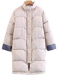 Abrigo de algodón Mujer Invierno Largas Chaqueta Parka Cuello De Piel De Mujer Moda Outwear Además