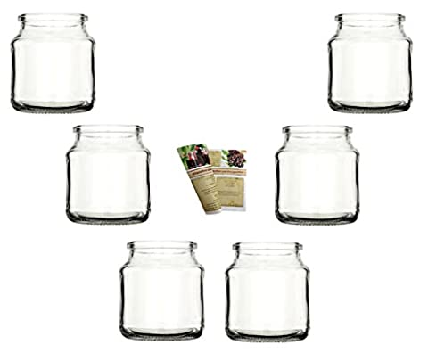 Gouveo 6er Set Rondo Tea Light Holders And 28Page Bottle Discount Recipe Booklet Tea Light or Votive Candle