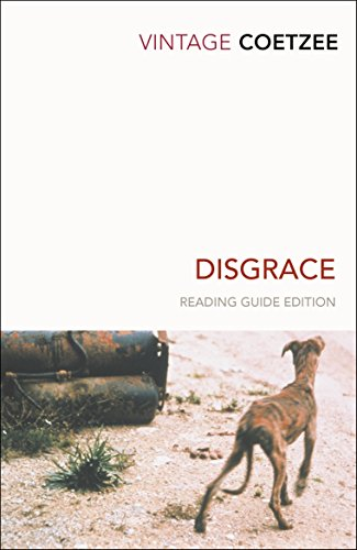 Book cover for Disgrace