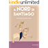 A Nord di Santiago: Diario di bordo di un naufrago di terra