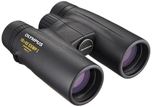 Olympus 10x42 EXWP I BaK-4 Porro Negro Binocular - Binoculares (129 mm, 53 mm, 145 mm, 660 g)