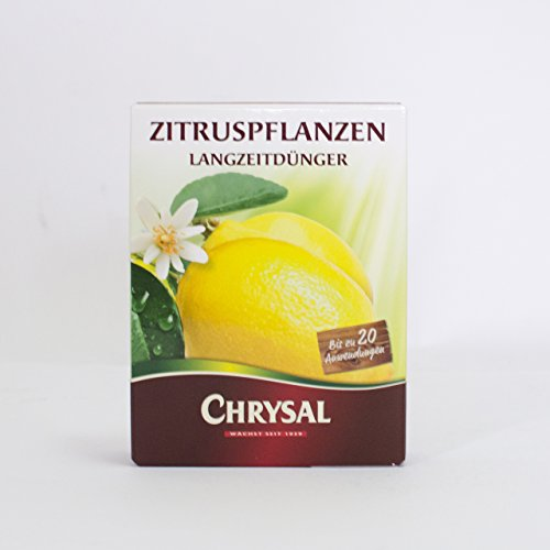 inter-flower-chrysal-ctricos-larga-duracin-300g-perla-abono-200eur-100g