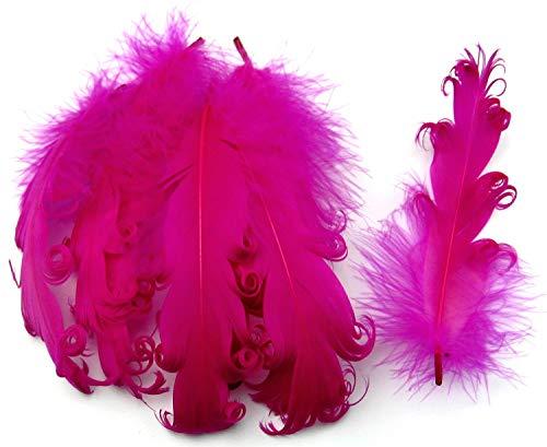 PANAX Echte extravagante Gänsefedern mit lockigen Spitzen in Rosa - Federnlänge ca. 12-18cm - 16 Farbvarianten, Ideal zum Basteln, Dekorationen, Fasching, Karneval, Hochzeiten, Hüte