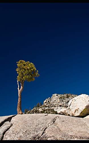 Notebook: Yosemite National Park California Sierra Nevada Mountains 5