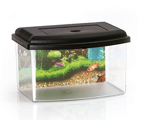 Nano Aquarium Acryl Terrarium Kunststoff Plastik Garnelen Aufzucht Becken Mini