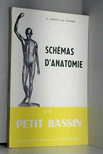Petit bassin (Schémas d'anatomie)