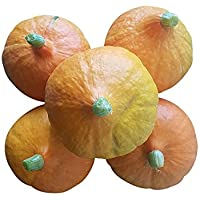 5 Hokkaidokürbisse - je Kürbis ca. 1 kg (ca. 5 kg Kürbis): Kochkürbisse aus Deutschland vegan, vegetarisch, ohne Gentechnik. Hokkaidos mit mild-aromatischen Geschmack, sind perfekt für Kürbissuppen, Salate und als Kürbissticks.