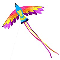 180 X 90cm Single Line Phoenix Kite for Kids and Adults Outdoor Beach Flying Kite with String and Handle