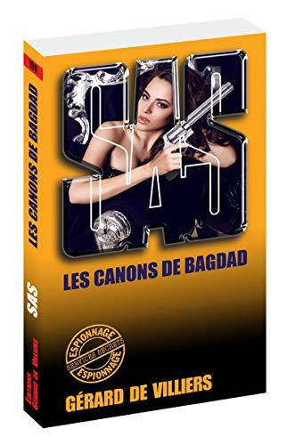 SAS 100 Les canons de Bagdad