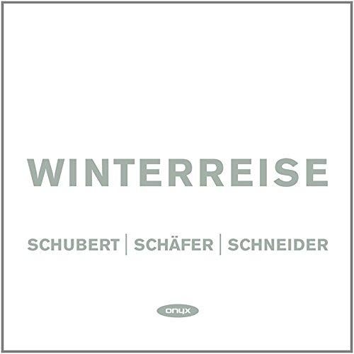 Winterreise : Voyage D'Hiver, Cycle De Lieder D.911