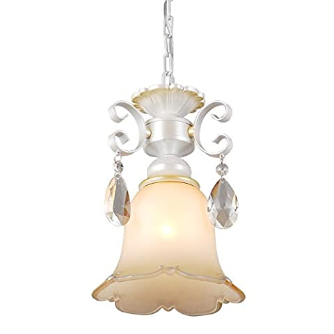 Caribou ceiling fixture/pendant Light ceiling Lamp Ceiling Light pendant American rural idyll living room personality continental iron chandelier Pearl silver Living Room