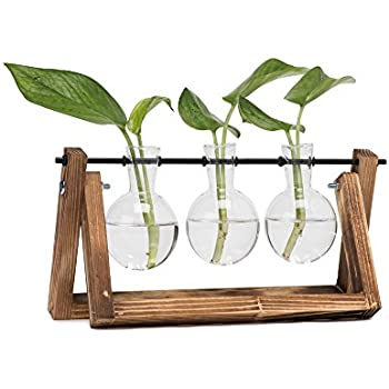 c601556e7478 Hyindoor Bulb Vase with Vintage Wooden Stand and Metal Rotating Rod for  Hydroponics Plants Desktop Glass Planter for Home Decoration
