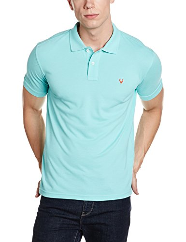 Allen Solly Men's Polo (8907587727141!_AMKP317G04239!_Large!_Mint)