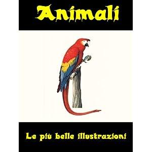 Animali - Le più belle illustrazioni