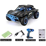GOODNESS INTERNATIONAL 4WD 2.4 GHz RC Car Short Course Truck Style 1/18 Scale High Speed R/C Racing Car Toy Remote Control Car