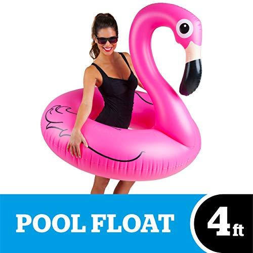 oze flamingo Pool zwemmen ()