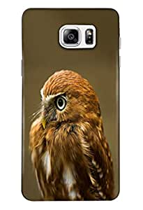 Samsung Galaxy Note 5 Mobile Back Cover For Samsung Galaxy Note 5; It Is Matte glossy Thin Hard Cover Of Good Quality (3D Printed Designer Mobile Cover) By Clarks