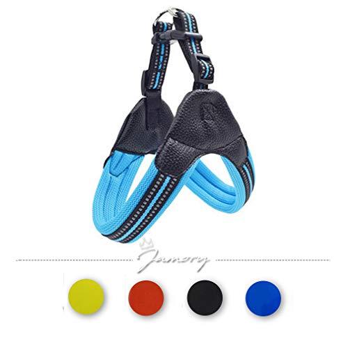Jamory Hundegeschirr Geschirr Brustgeschirr Softgeschirr Laufgeschirr Hund reflektierend Nylon Mesh (XS, Blau)