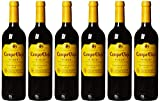 Campo Viejo Tempranillo Rotwein – Spanischer Rotwein mit Fruchtaromen