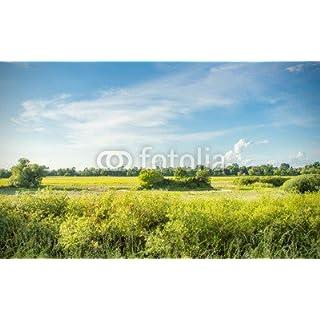 adrium Holz-Bild 110 x 70 cm:Naturschutzgebiet bei den Marchauen kleiner Breitensee, Bild auf Holz