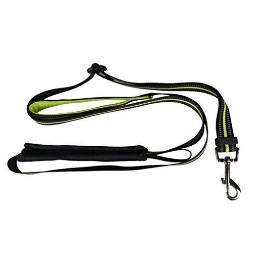 Yiiquanan Hochwertige Reflektierend Hundegeschirr Harness Weste für Mittlere/Große Hunde - Geschirr Verstellbar (Grün#2, Asia M)