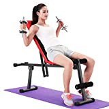 ZL Roman Chair Hyper AB Rückenverlängerung Sitzbank, Schwarz Rot Gewicht Sitzbank Ganzkörper Training Ablehnen Sitzbank Sitzpolster Matte, Gym Olympic Weight Bench