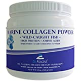 Best Collagen Types 1 & 3 Powders - LARGE 12 oz Marine Collagen Peptides Powder. Wild-Caught Review