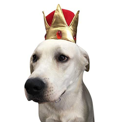 Valcatch Haustier Kostümzubehör - Dog King Gold Crown für Geburtstagsfeier (Kings Crown Kostüm)