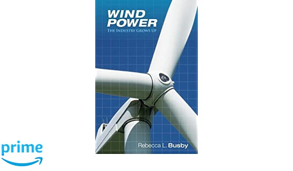 Wind Power: The Industry Grows Up