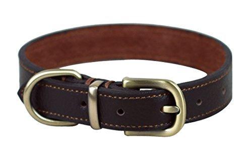 Rantow weich fest Echtes Leder Klassische Hundehalsband , Hals Größe 33cm bis 39 cm und 2 cm breit, Ordentlich Nähen Fähigkeit Handmade mit Tough Copper Hundeleine Schnalle Kragen für mittlere / kleine Hunde (Brown) (Kragen Medium Hund Ausbildung)