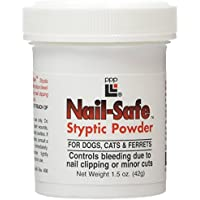 Ppp Styptic Powder 42G