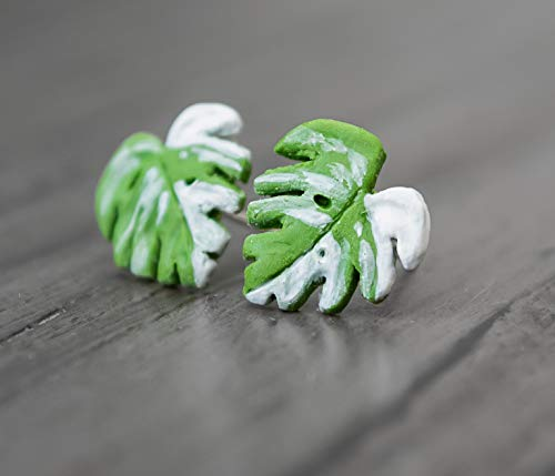 Monstera Variegata Ohrstecker - Blatt - Monstera - Leaf - Plant - Plantlady - Tropisch - Pflanze
