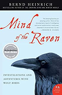 Mind of the Raven: Investigations and Adventures with Wolf-Birds (P.S.) (0061136050) | Amazon Products