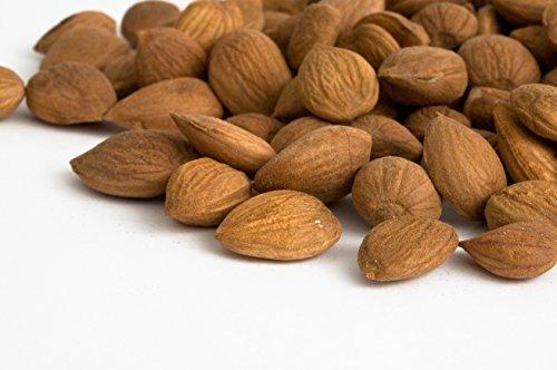 Preisvergleich Produktbild 2 kg bittere Aprikosenkerne - handverlesen bitter Aprikose Aprikosen Kern B17