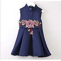 FXFAN Vestidos para Niños Four Seasons New Sweet Kids Niñas Vestidos sin Mangas Niños Pequeños Vestidos de Moda Azul PinkZHANGM (Color : Azul, Tamaño : 120)
