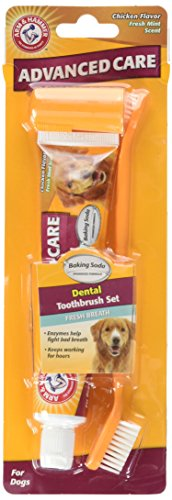 Arm & Hammer Advanced Pet Care Enzymatic Toothpaste & Brush Set for Dogs, Poultry Flavor