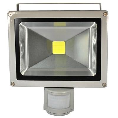 30W SMD LED Flutlicht Fluter Strahler Außenbeleuchtung Innenbeleuchtung Kaltweiss IP65 Wasserdicht mit Bewegungsmelder
